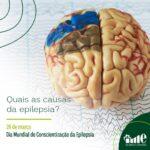 Quais as causas da epilepsia?