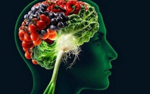 Read more about the article Como alimenta o seu cérebro? Fique a conhecer o Top 5 dos alimentos para ajudar ao seu bom funcionamento